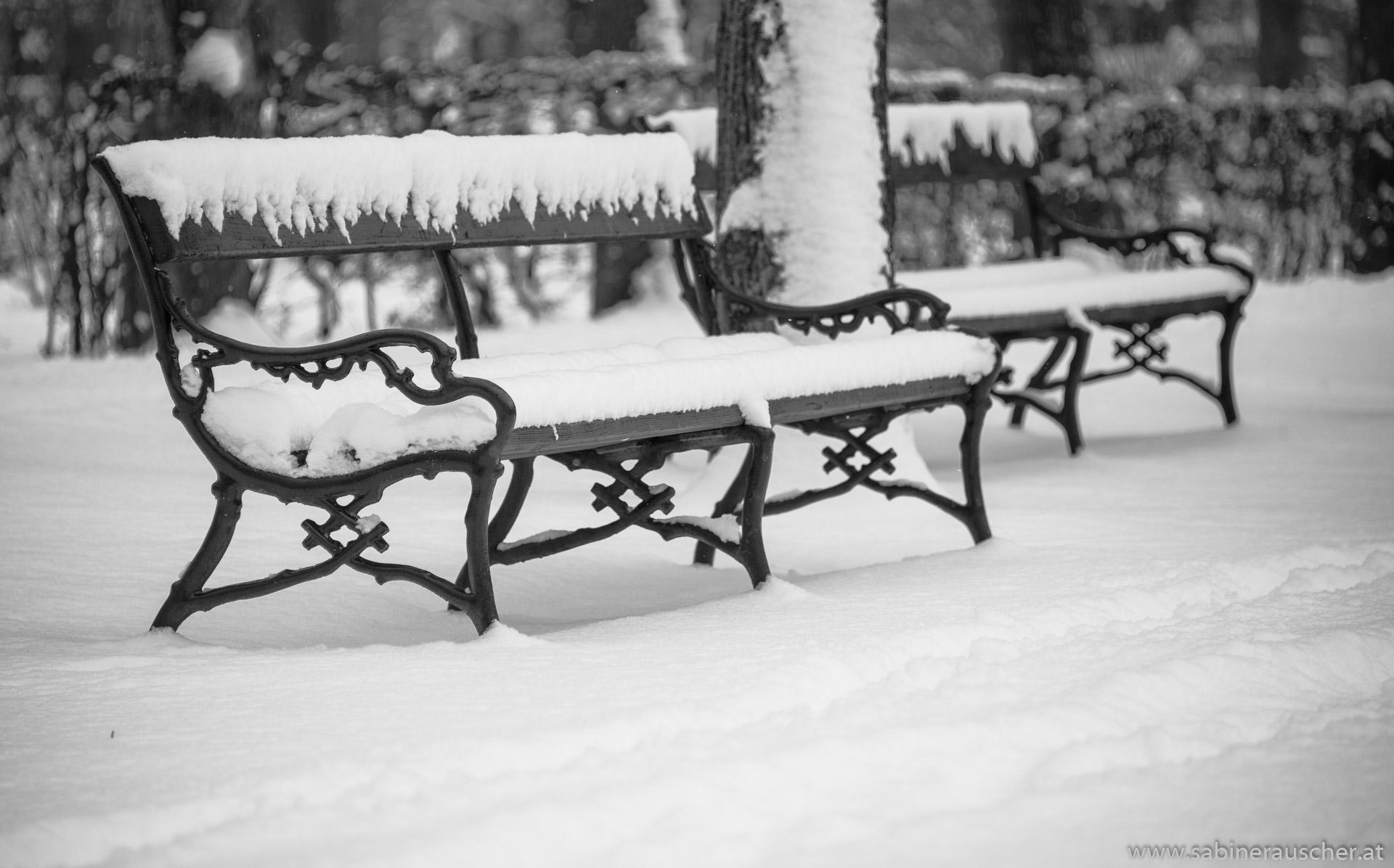 Snow covered benches in Schönbrunn, Vienna   schneebedeckte Parkbänke im Schloßpark Schönbrunn, Wien