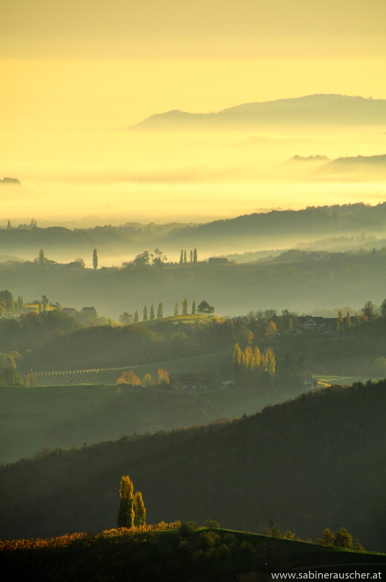 morning mist in South Styria´s rolling hills   morgendliche Herbstnebel in der Südsteiermark