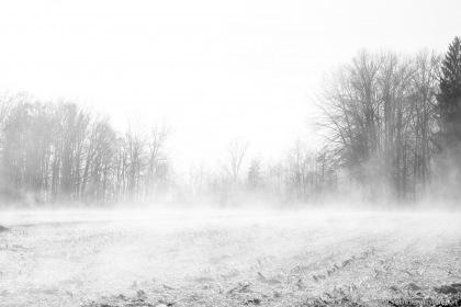 Winter scenery in a field   Winterlandschaft