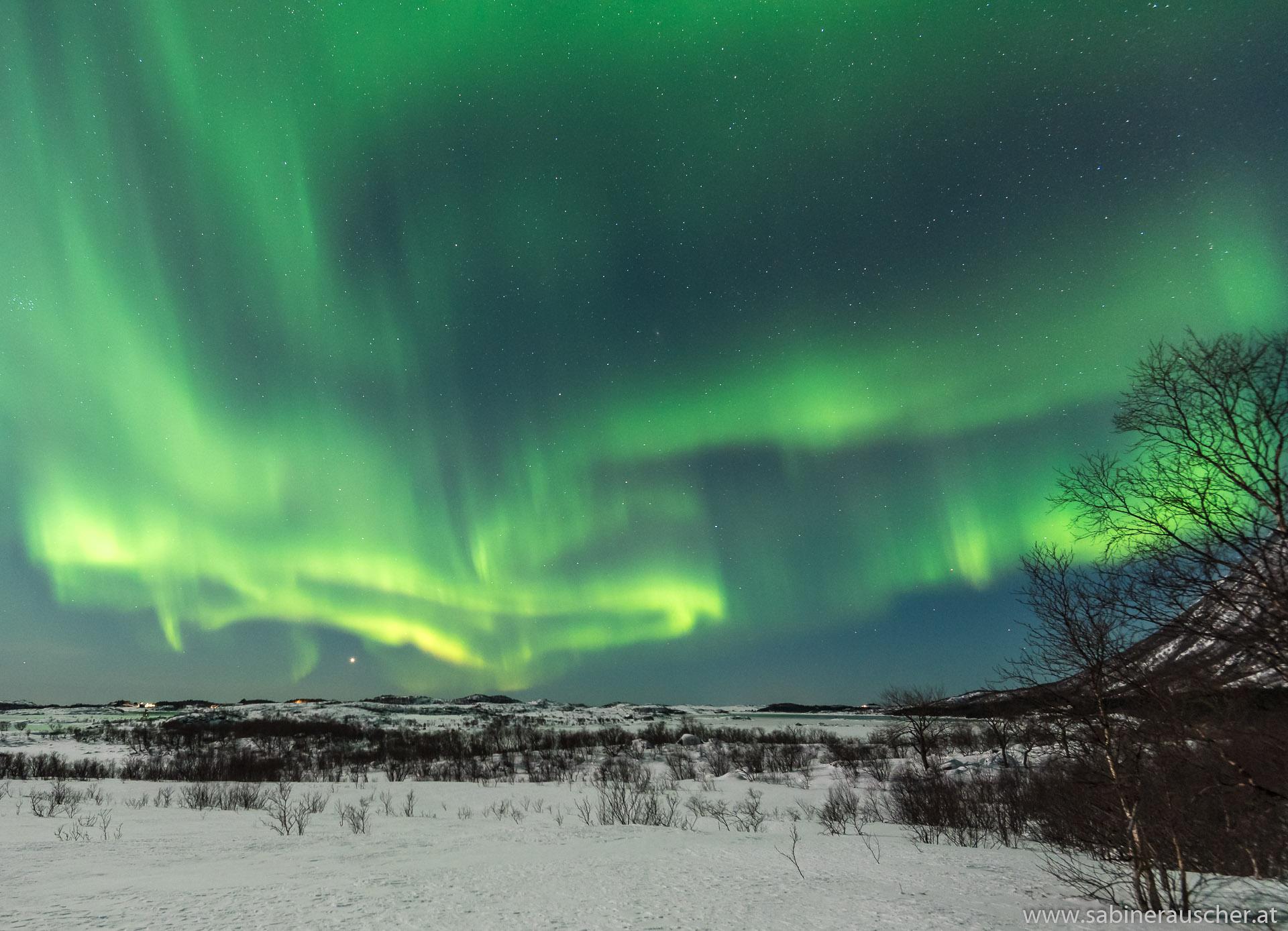 Northern Lights | Nordlicht