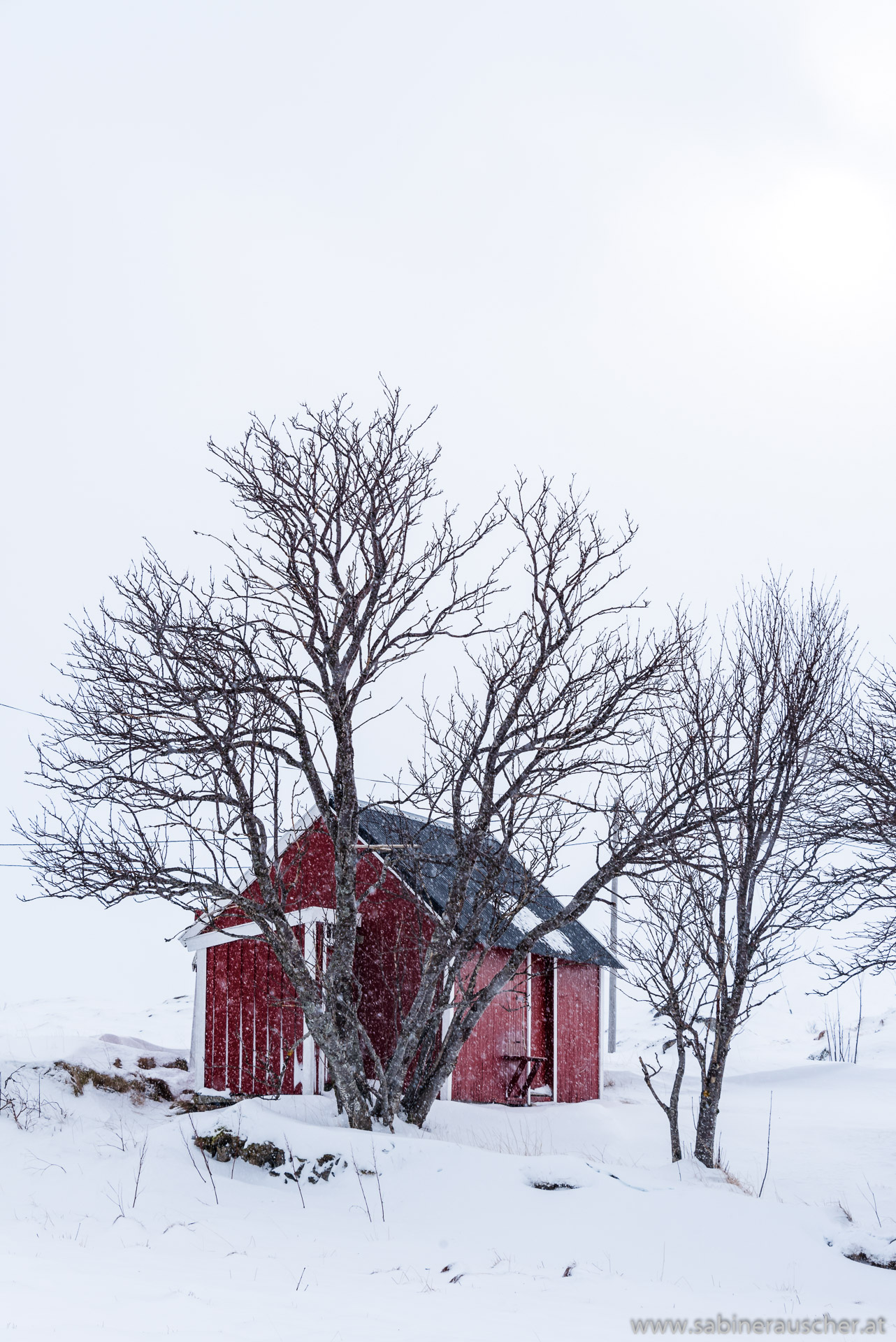 snowfall in Borgvag | Schneegestöber in Borgvag