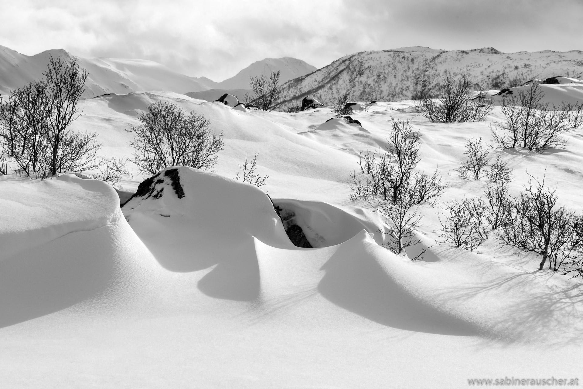 snowdrifts in the sun | schneeverwehte Landschaft im Sonnenlicht