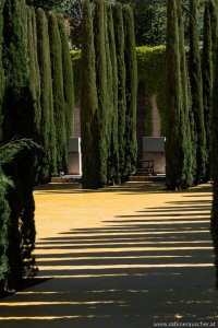 Gardens of Alhambra |Generalife in der Alhambra