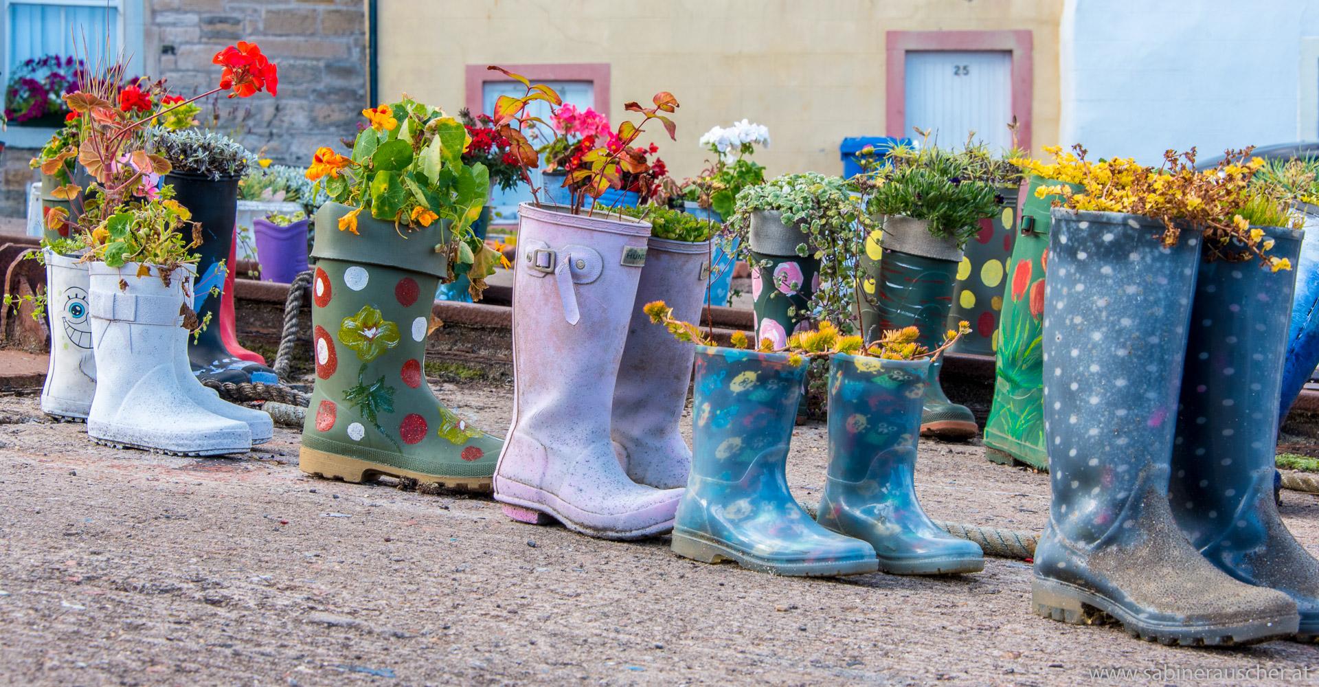 planted wellies at St. Monans Harbour at East Neuk, Scotland | bepflanzte Gummistiefeln im Hafen von St. Monans