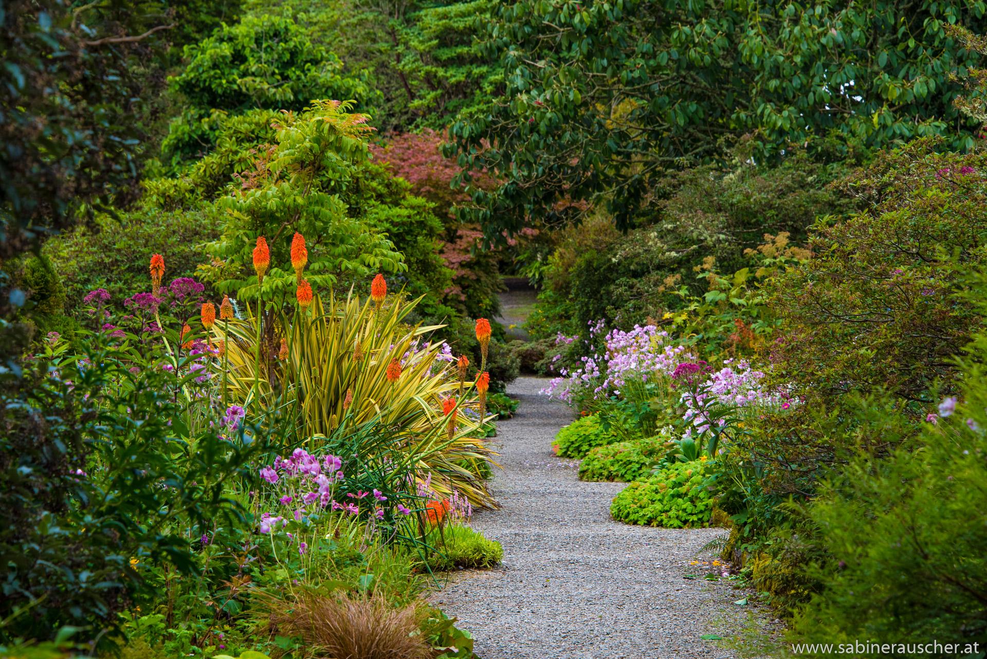 Arduaine Garden, Scotland