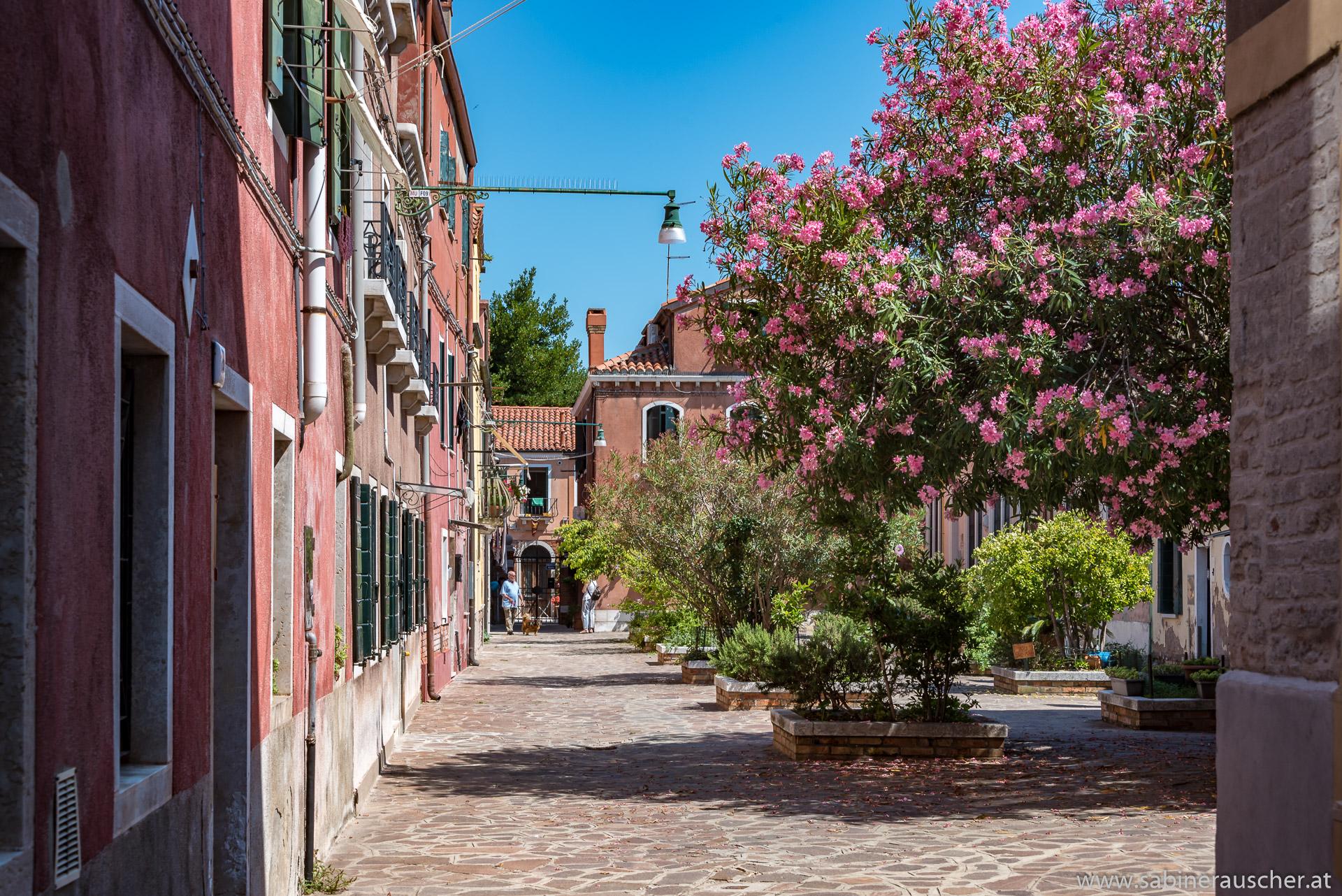 Venice - a tranquil place at Murano | Venedig - ein stiller Platz auf Murano