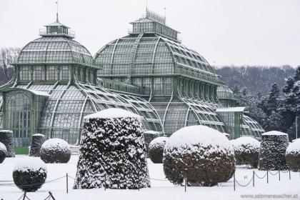 Palmenhaus in Schönbrunn | Palmenhaus im Schloßgarten Schönbrunn
