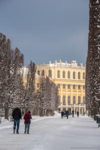 Winter at Vienna´s Castle Schönbrunn | Schloß Schönbrunn im Winter